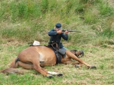 Historical reenactor shooting over fallen horse